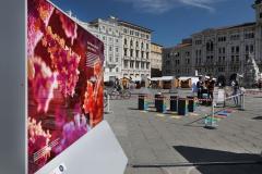 036_2020-09-06-Trieste-Maker-Faire_PH_Massimo_Goina