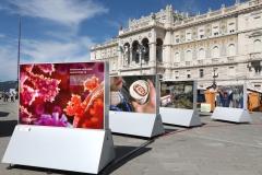 038_2020-09-06-Trieste-Maker-Faire_PH_Massimo_Goina