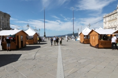 039_2020-09-06-Trieste-Maker-Faire_PH_Massimo_Goina